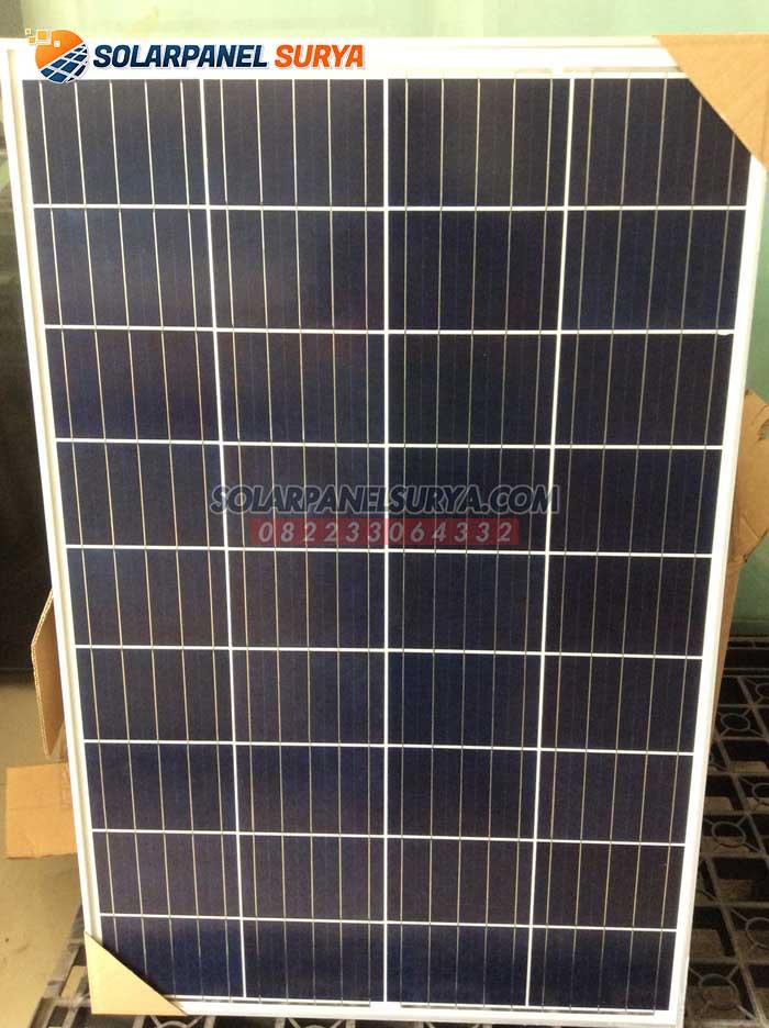 harga Panel Surya 100 WP Polycrystalline murah bergaransi