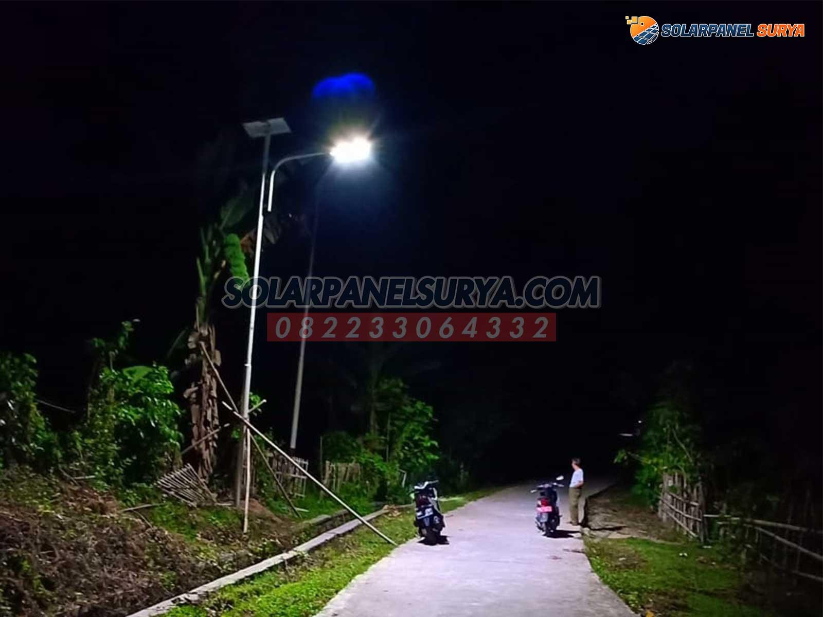 lampu PJUTS Solar Cell 2in1 80 watt